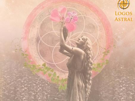 Venus Star Point y Luna Llena en Libra: Una gran oportunidad