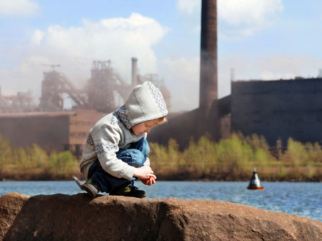 Environmental Chemicals= Neurodevelopmental Disorders
