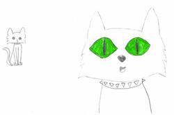 Cats by Mariana