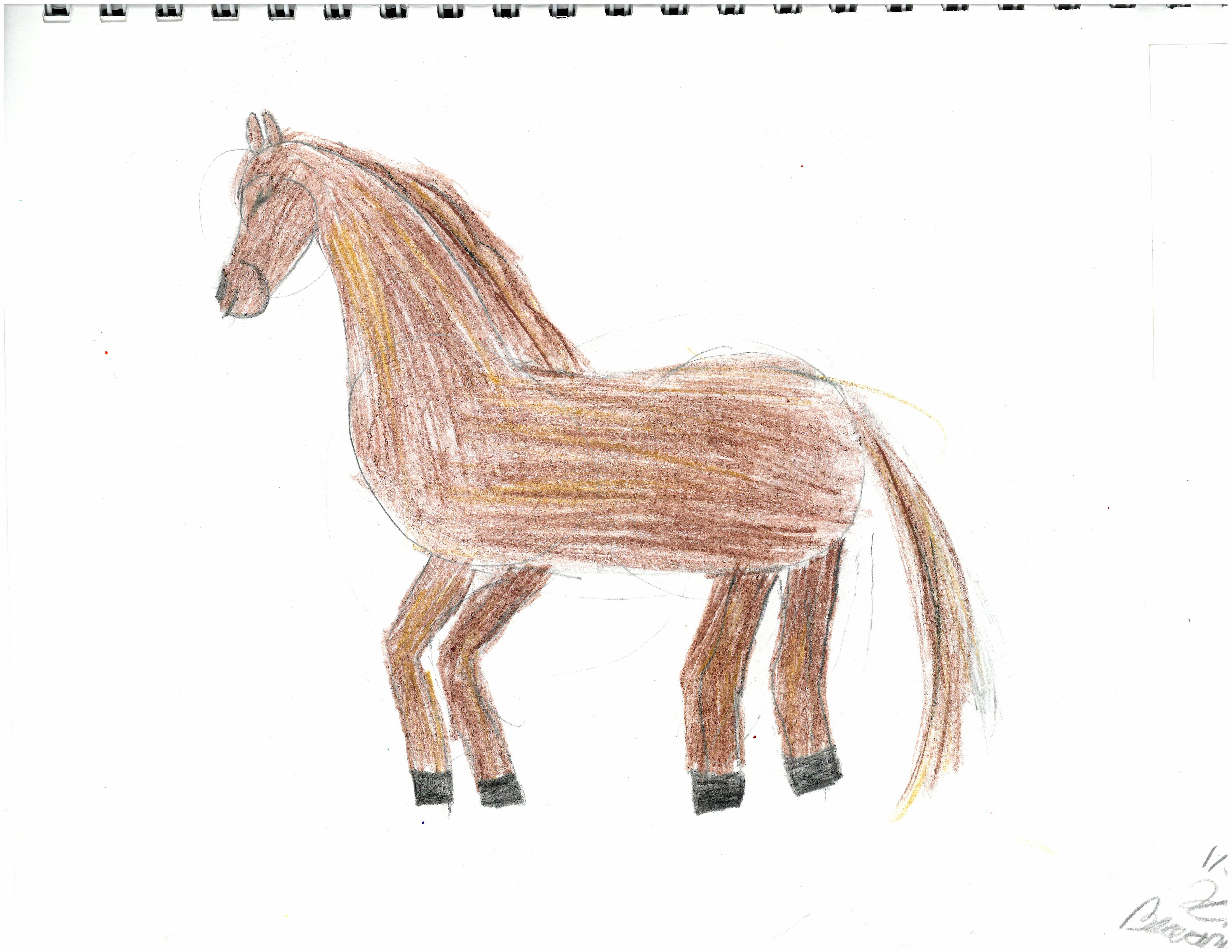 horse by Kristianna