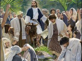 Holy Week: Palm Sunday