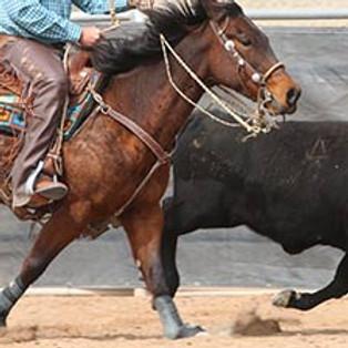 Southeast Iowa Working Horse Challenge 2