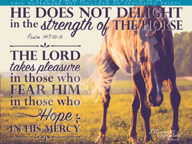 Horses in the Scriptures: Psalm 147:10-11