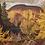 Thumbnail: Autumn on the York River