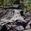 Thumbnail: The Little Waterfall