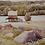 Thumbnail: Lake Kashawigamog