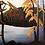 Thumbnail: Northern Lake