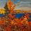 Thumbnail: Autumn Foliage