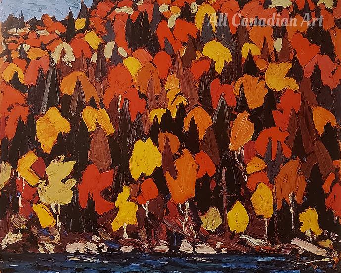 Autumn Foliage Fall