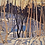 Thumbnail: Snow Shadows