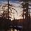Thumbnail: Beaver Swamp, Algoma