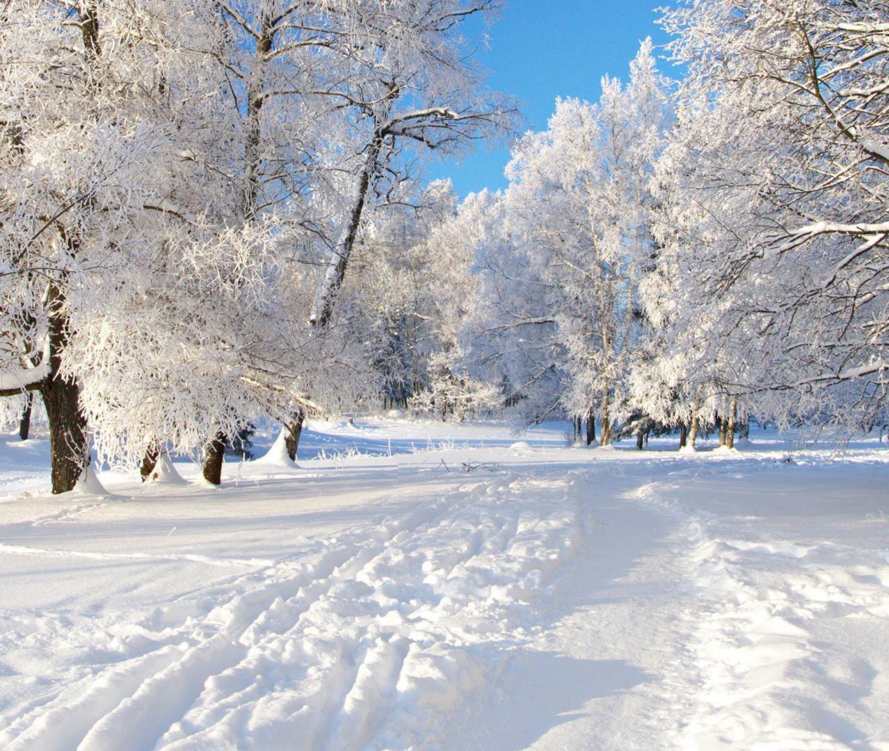 Neve - Manzaneda