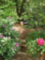 IMG_6406_edited.jpg