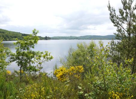 Des retrouvailles au bord du lac de Vassivière