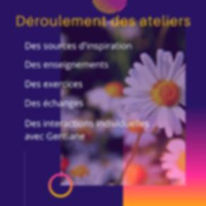 Ateliers_transition(1)_COMPRESSÉE.png