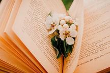 book-5173247_1920.jpg