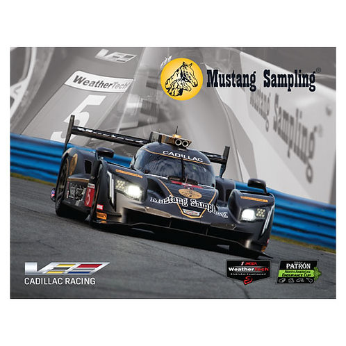 Cadillac Racing Hero Card