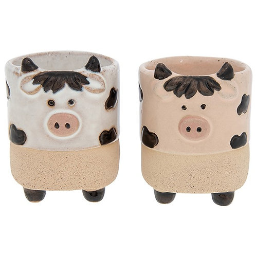 COW egg cup