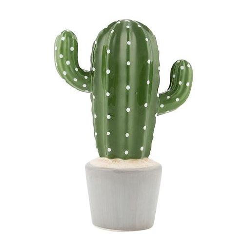Cactus Money Box