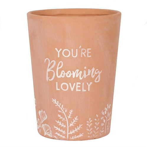 Terracotta Plant Pot - You're Blooming Lovely