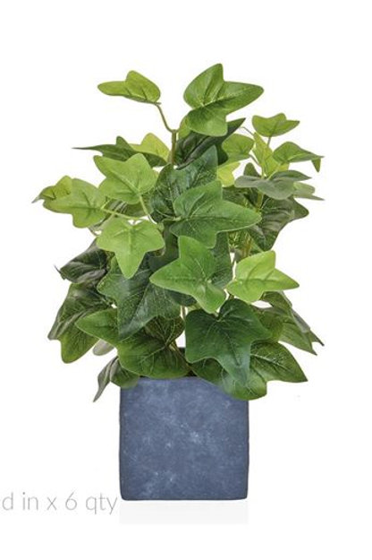 36 cm Silver variegated IVY Plant in Slate Pot