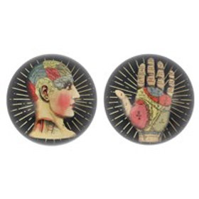 Phrenology and Palmistry Glass Paper Weight
