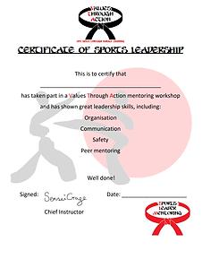 Mentoring Certificate.png