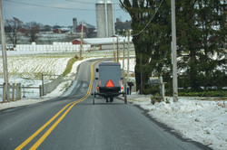 Amish Buggy Snowy Day Lancaster