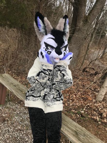 Tundra Rabbit