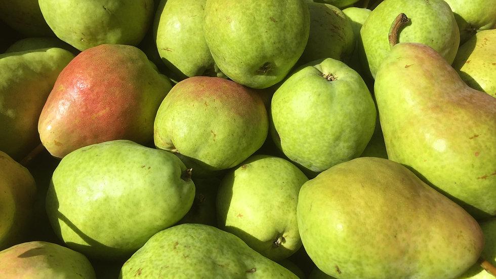 Reserve Approx. 20lb Box - Bartlett Pears