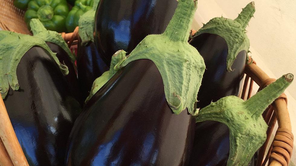 "Eggplant, 4"" Potted Plant"