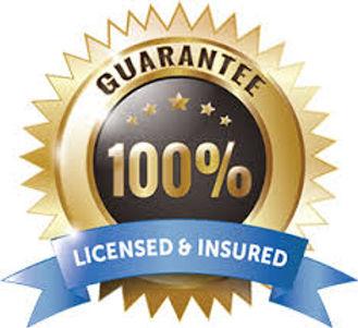 License Insured Guarantee.jpg