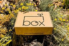 Hortus Domi Box .jpg