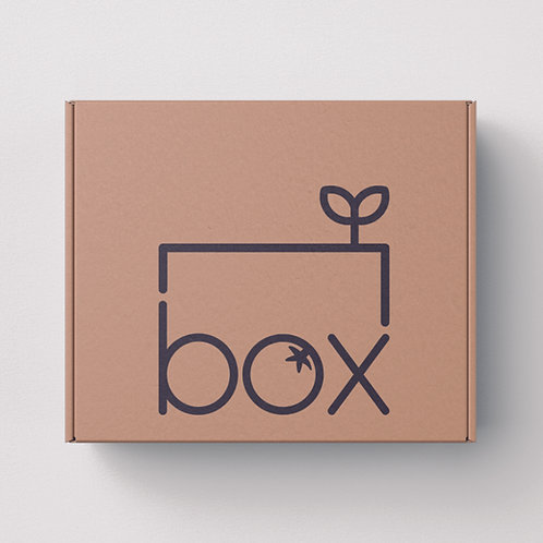 Hortus Domi Box XL