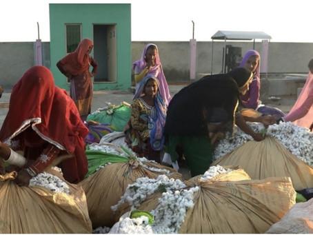 Bestseller takes big step in organic cotton, also pauses Myanmar orders