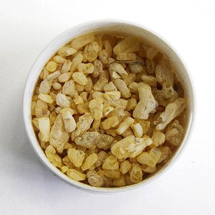 Sandarac Gum | Goma resina Sandaraca
