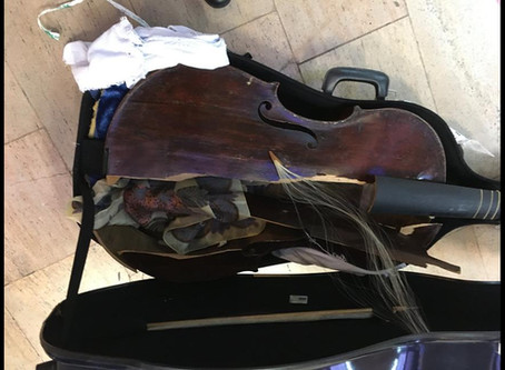 Destroyed viola da gamba UPDATE: further info from owner, plus Alitalia responds