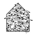 Mi casa se llenó de aves