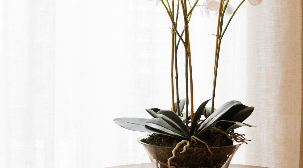 Seed Residence L237-28.jpg