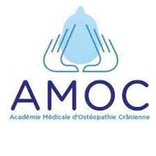 AMOC NEURO-ANATOMIE EN OSTÉOPATHIE DANS LE CHAMP CRANIEN