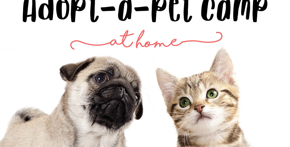 Adopt a Pet Camp at HOME