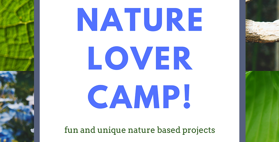 Nature Lover Camp! June 8-10, 1-4pm daily