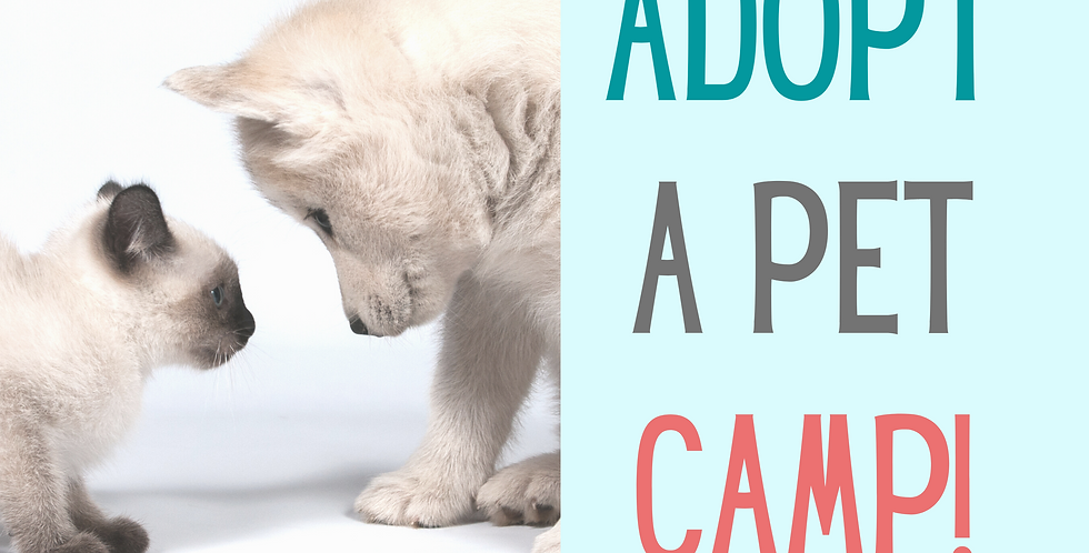 Adopt-A-Pet Camp Session 3! June 29-July1st, 9am-Noon  daily