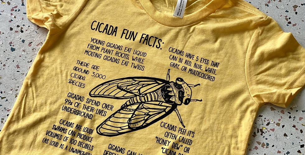Cicada Fun Facts KIDS Tee!