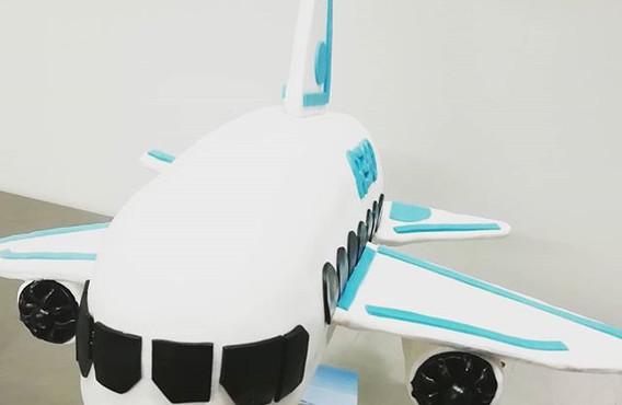 Ich heb ab✈️_#flugzeug #flugzeugtorte #m
