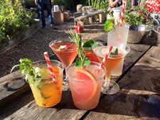 Summery-cocktails.jpg