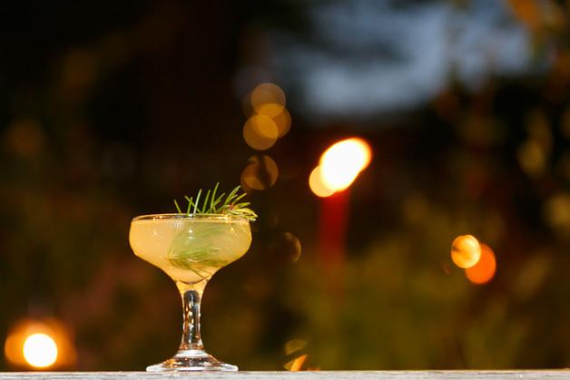 woodland martini at night.jpg