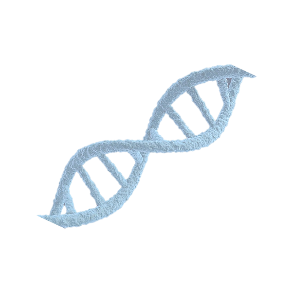 DNA for WIX.png