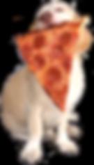 dogeatpizza2.png
