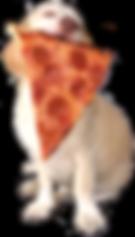 dogeatpizza1.png
